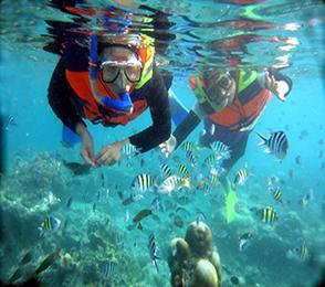 Aktifitas Wisata Yang Populer di Pulau Pari