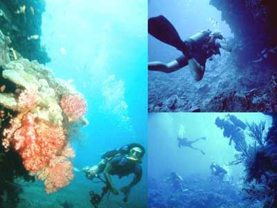 Berbagai Kegiatan Menyenangkan Di Pulau Pantara