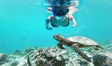 Pulau Tidung Harga Paket Wisata Pulau Seribu Jakarta 2021