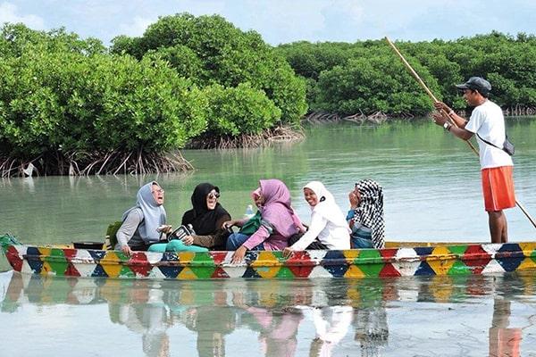 jelajah taman mangrove pulau pari kepulauan seribu jakarta