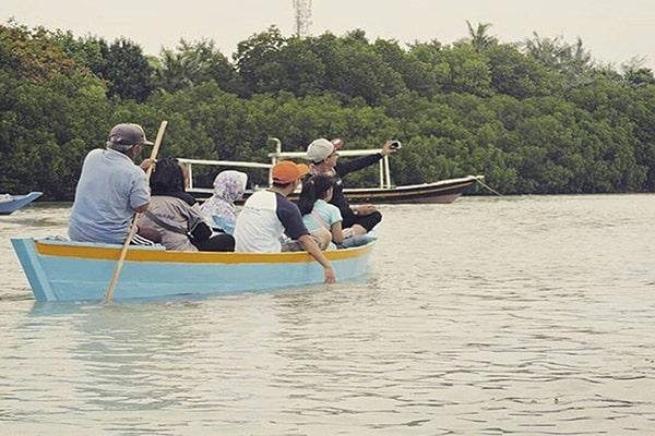 wisata murah di pulau pari kepulauan seribu jelajah detinasi pohon mangrove