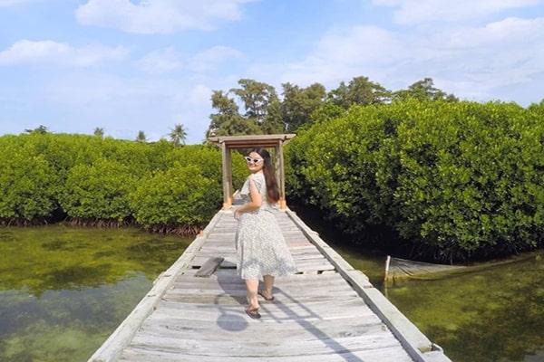 wisata taman mangrove di pulau harapan